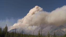 HD2009-9-37-2 Forest fire heavy smoke TL Stock Video Footage