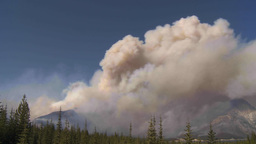 HD2009-9-37-2 Forest fire heavy smoke TL Footage