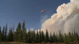 HD2009-9-37-4 Forest fire heavy smoke helo descending Footage
