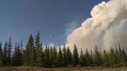 HD2009-9-37-4 Forest fire heavy smoke helo descending Stock Video Footage