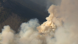 HD2009-9-37-8 Forest fire heavy smoke aerial Stock Video Footage