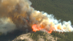 HD2009-9-37-10 Forest fire big flames aerial Footage