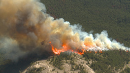 HD2009-9-37-10 Forest fire big flames aerial Stock Video Footage