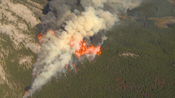 HD2009-9-37-12 Forest fire big flames aerial spectacular Stock Video Footage