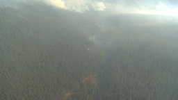 HD2009-9-39-1 aerial forest fire helo torcher Stock Video Footage
