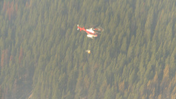 HD2009-9-39-3 aerial forest fire helo torcher Stock Video Footage