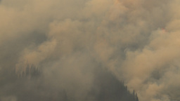 HD2009-9-39-5 aerial forest fire flying into fire Stock Video Footage