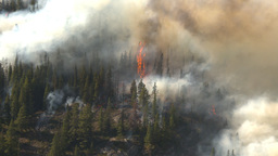 HD2009-9-39-9 forest fire aerial flames Footage
