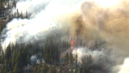 HD2009-9-39-9 forest fire aerial flames Stock Video Footage