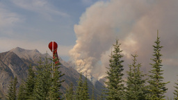 HD2009-9-40-5 forest fire thru trees spectacular Stock Video Footage