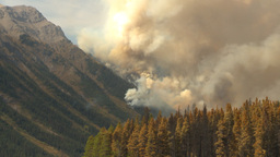HD2009-9-40-9 forest fire Footage