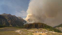 HD2009-9-40-13 forest fire audio chatter Stock Video Footage