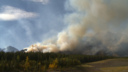 HD2009-9-40-17 forest fire pan Stock Video Footage