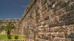 HD2008-8-12-31 Bermuda old fort palms Stock Video Footage