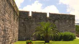 HD2008-8-12-33 Bermuda old fort palms Stock Video Footage