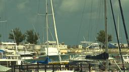 HD2008-8-13-1 marina Stock Video Footage