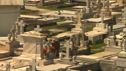 HD2008-8-14-29 San Juan cemetary Stock Video Footage