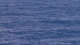 HD2008-8-17-14 open ocean Stock Video Footage