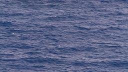 HD2008-8-17-16 open ocean Stock Video Footage