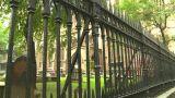 NYC Trinity Church Cemetery stock footage