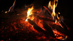Camp Fire Stock Video Footage