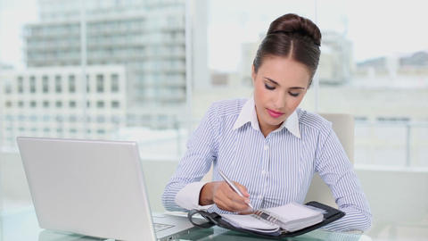 Young businesswoman planning with laptop and diary Footage