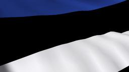 Estonian Flag Footage
