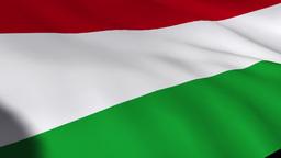 Hungarian Flag Footage