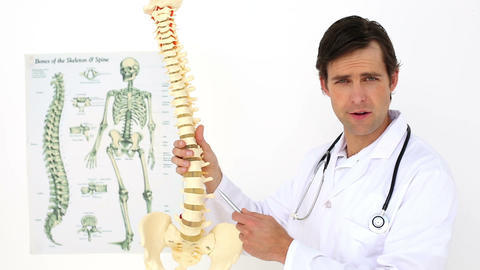 Chiropractor Explaining Spine Model To Camera stock footage