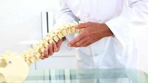 Doctor explaining skeleton spine model to camera Live Action