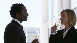 Two business people toasting their success Footage