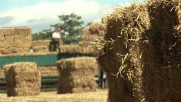 Hay Bails at Harvest Footage