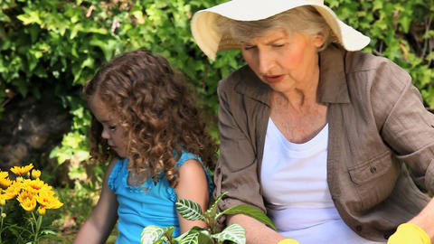 Grandmother and granddaughter gardening Footage