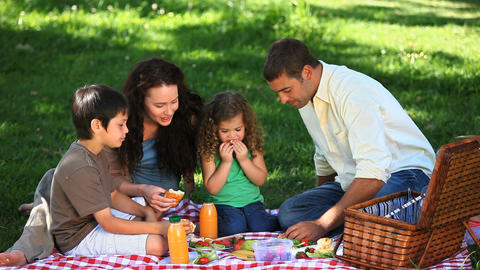 Cute family feasting at a picnic on a tablecloth Footage