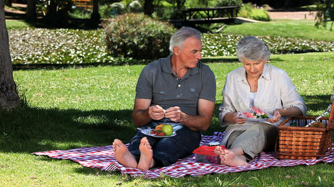 Old woman feasting at picnic with her husband Live Action