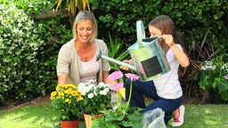 Mother and daughter watering potted plants in the  Footage
