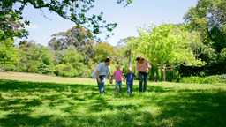 Family walking together in the park as the father  Footage