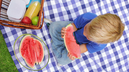 Overhead Shot Of A Boy Sitting On A Picnic Blanket stock footage