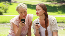 Two women with their phones in hand in the park as they read a text message Live Action