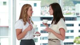 Businesswomen drinking coffee together Footage