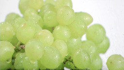 Green grapes in super slow motion being soaked Footage