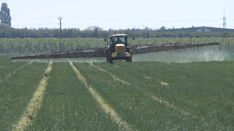 vegetable pesticide sprayer Stock Video Footage