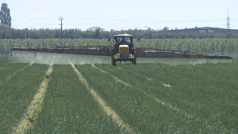 vegetable pesticide sprayer Footage