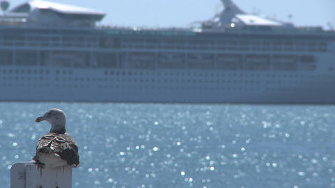 cruise liner passing Stock Video Footage