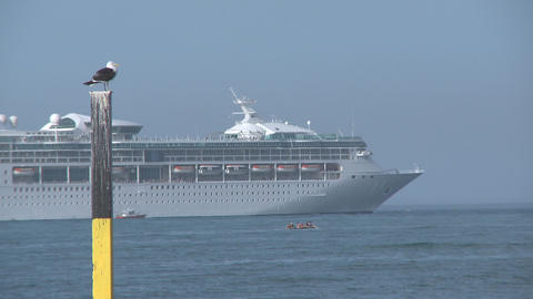 cruise ship with seagull on pole Stock Video Footage