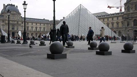 Louvre Live Action