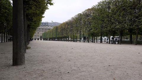 Palais Royal Stock Video Footage