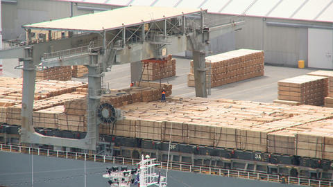loading timber products timelapse Footage