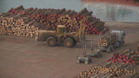 log truck unload at port Stock Video Footage