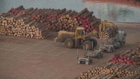 log truck unload at port Footage
